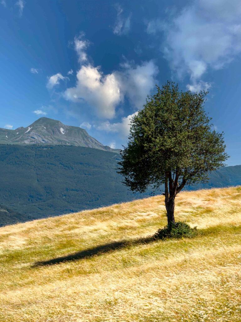 Panorama Appennino Reggiano